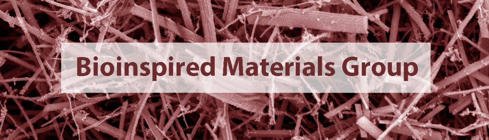 Bioinspired Materials Group