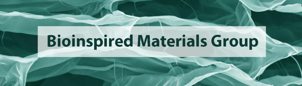 Bioinspired Materials Group