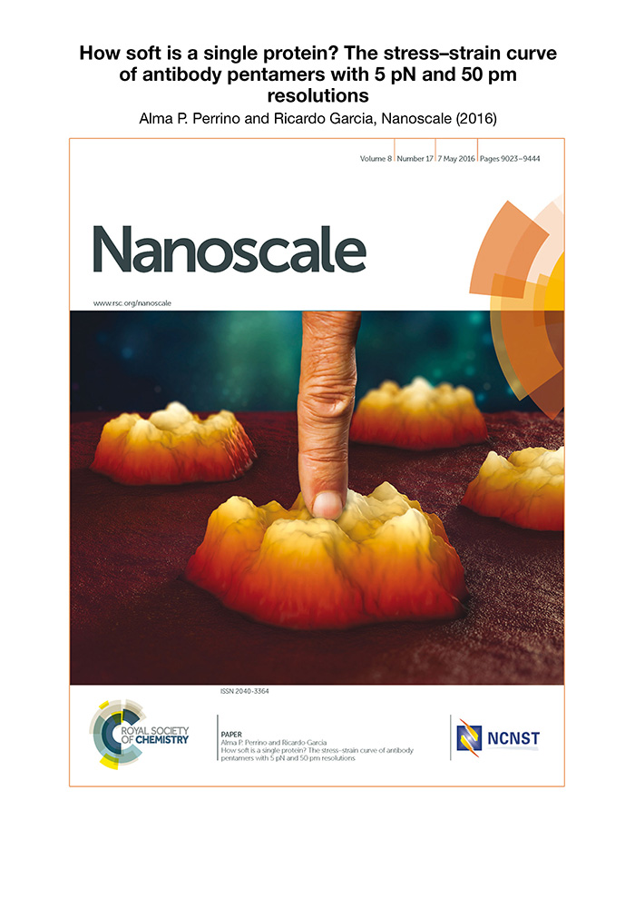Ricado garcia Nanoscale Cover